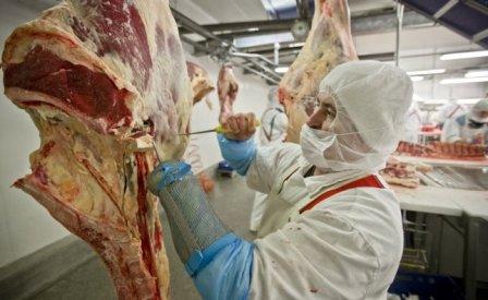 meat pollitavs