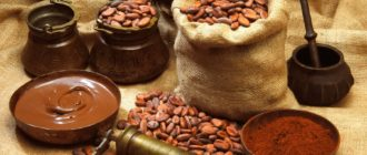 Польза какао бобов для организма